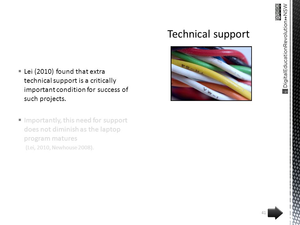 Lei (2010) found that extra technical support is a critically important condition for success of such projects.