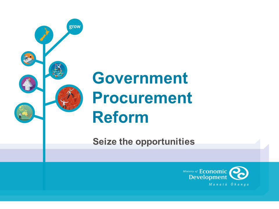 Government Procurement Reform Seize the opportunities