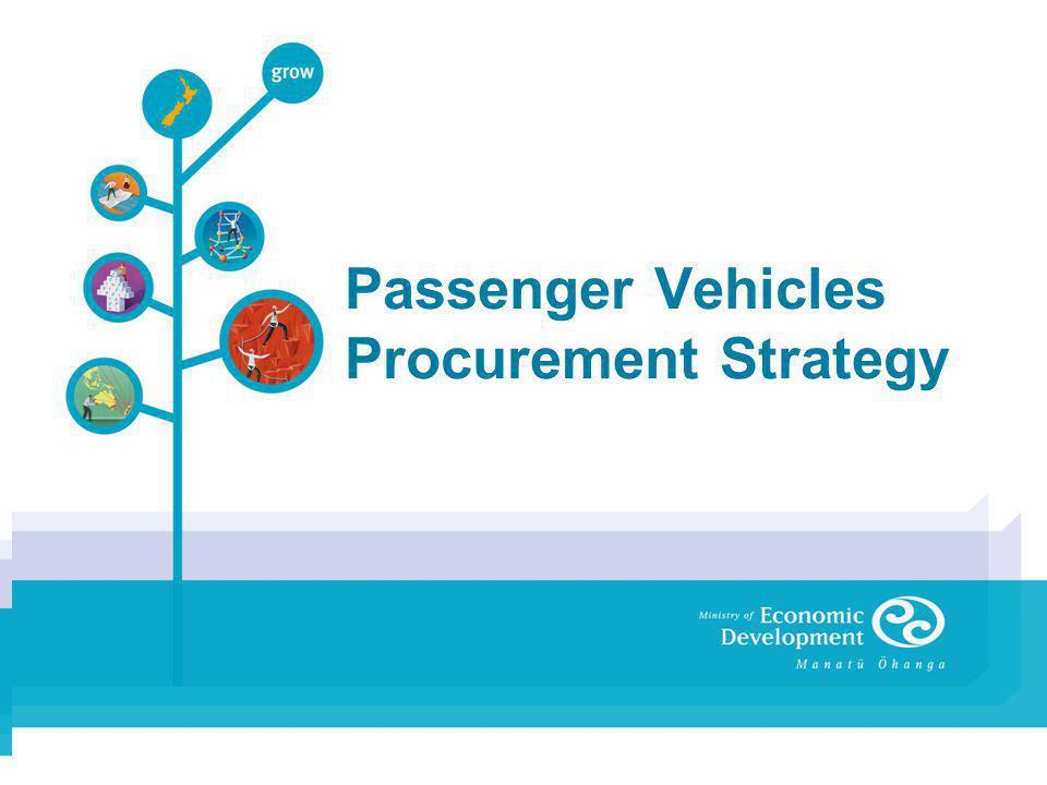 Passenger Vehicles Procurement Strategy