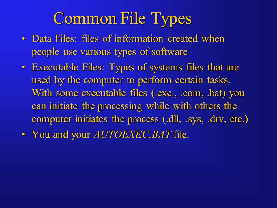 Common File Types Data Files: files of information created when people use various types of softwareData Files: files of information created when people use various types of software Executable Files: Types of systems files that are used by the computer to perform certain tasks.