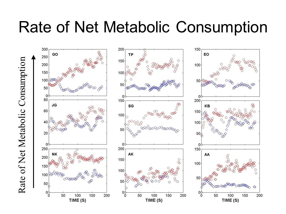 Rate of Net Metabolic Consumption