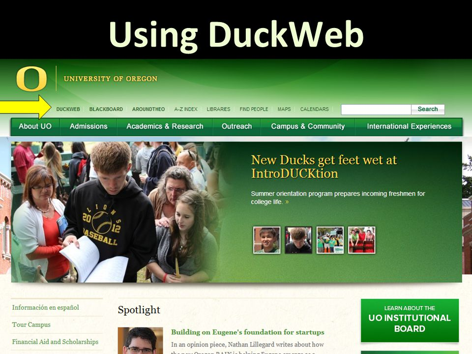 Using DuckWeb