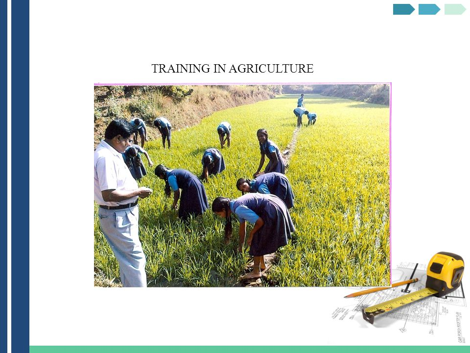 TRAINING IN AGRICULTURE