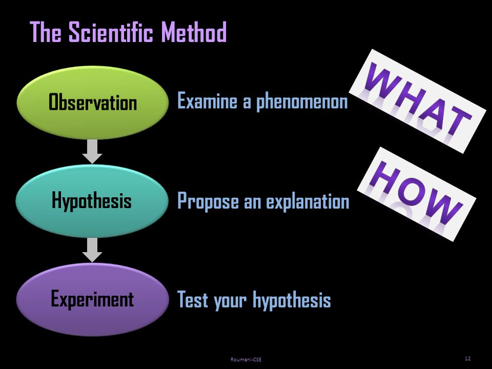 Roumani-CSE HypothesisExperiment 12 The Scientific Method Examine a phenomenon Propose an explanation Test your hypothesis
