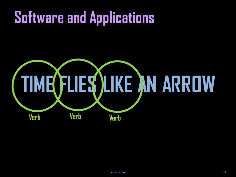 Roumani-CSE 30 Software and Applications TIME FLIES LIKE AN ARROW Verb