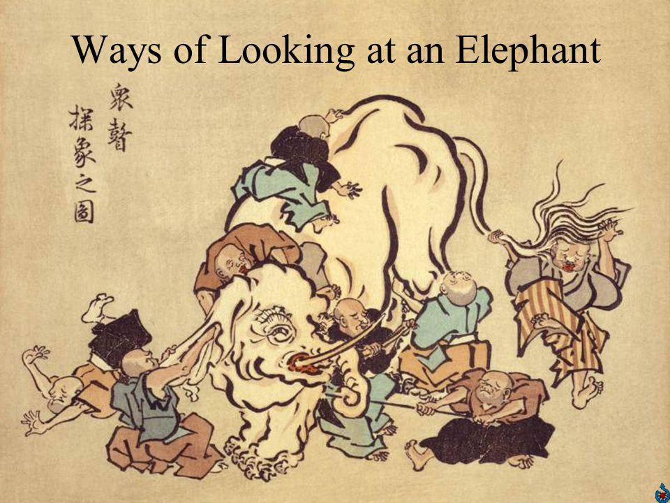Ways of Looking at an Elephant
