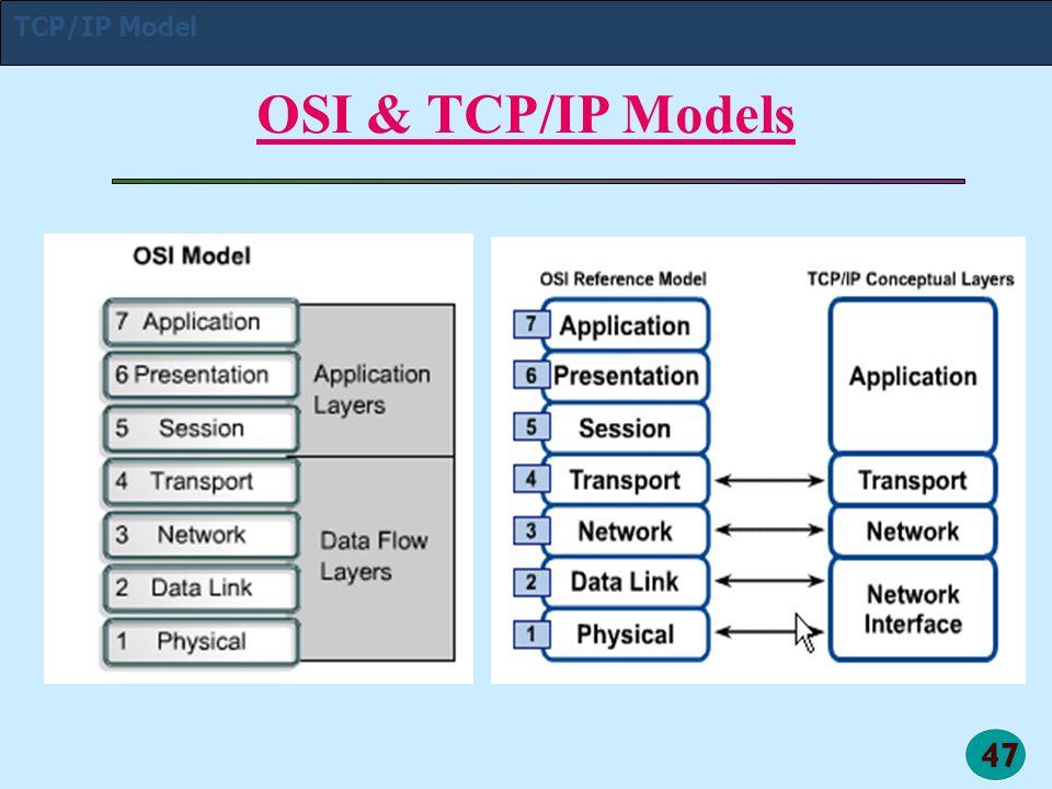 47 OSI & TCP/IP Models TCP/IP Model