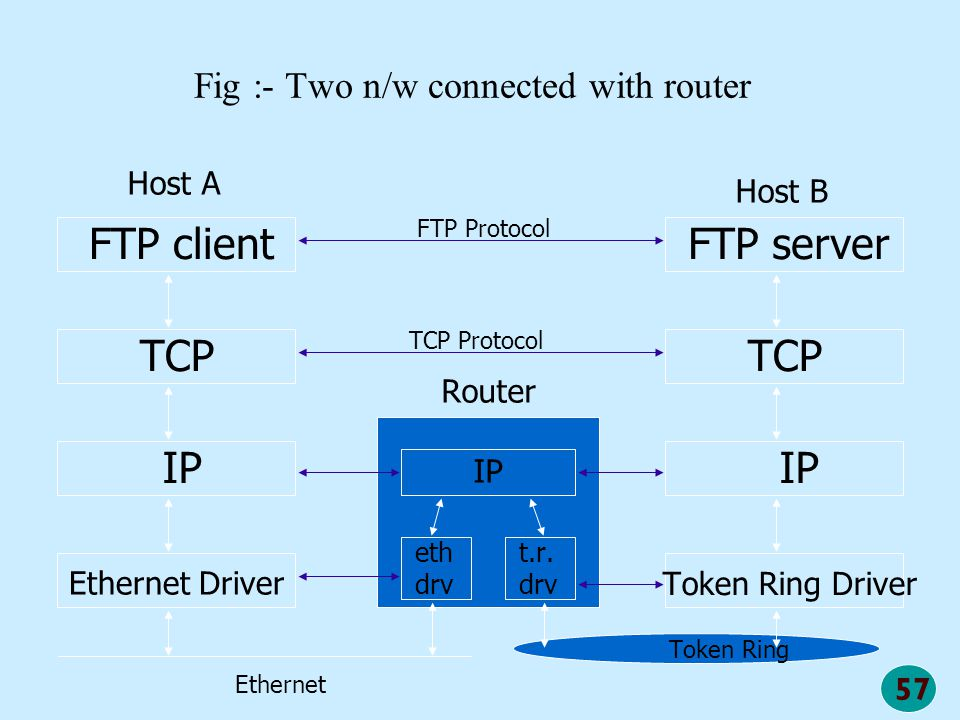 57 Fig :- Two n/w connected with router FTP server TCP IP Token Ring Driver FTP client TCP IP Host A Host B Ethernet Driver Token Ring Router IP eth d