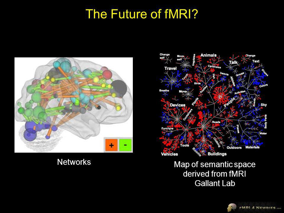 The Future of fMRI? Map of semantic space derived from fMRI Gallant Lab Networks