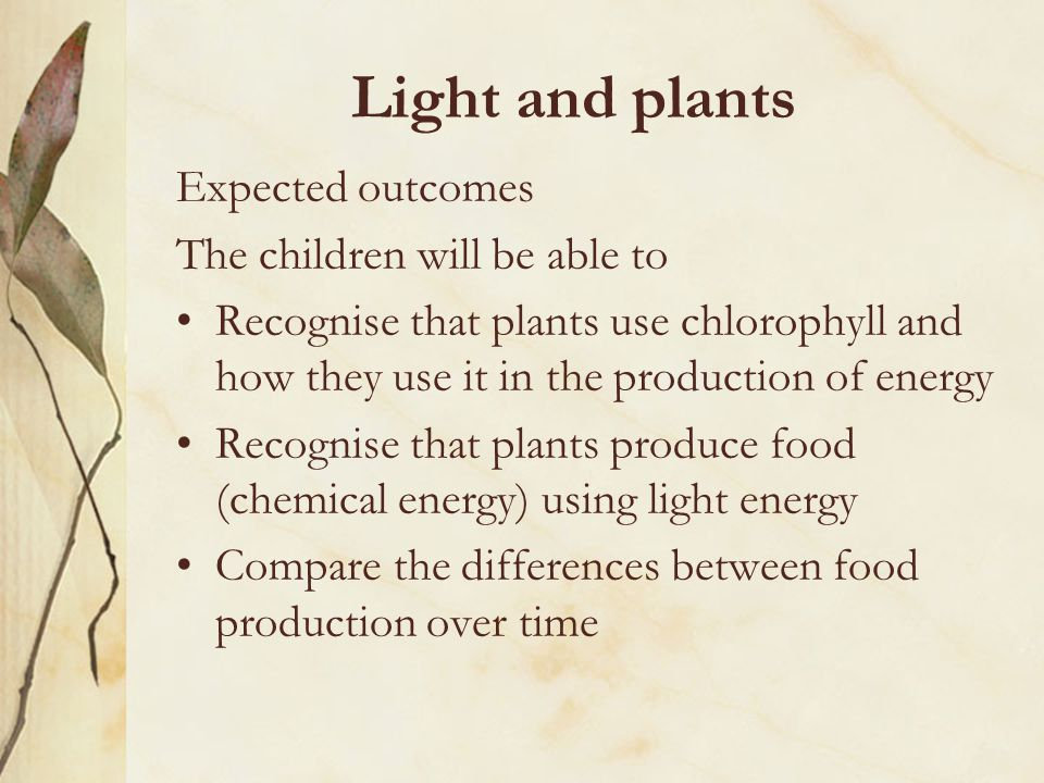 Light and plants Expected outcomes The children will be able to Recognise that plants use chlorophyll and how they use it in the production of energy Recognise that plants produce food (chemical energy) using light energy Compare the differences between food production over time