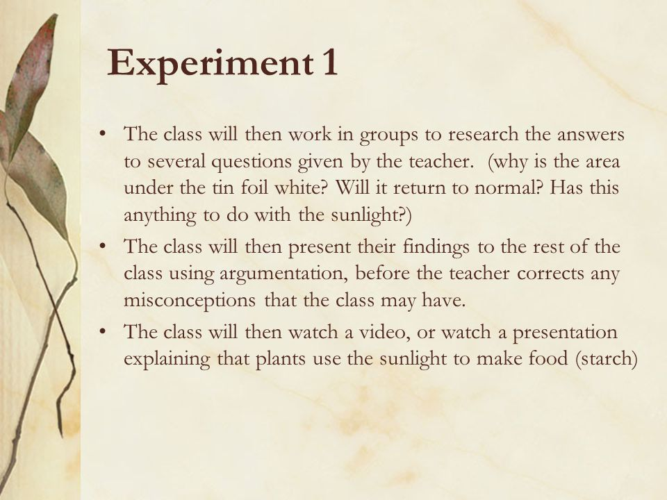 Experiment 1 The class will then work in groups to research the answers to several questions given by the teacher.