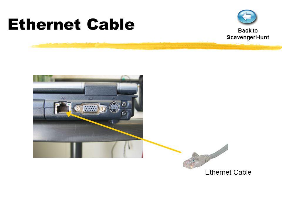 Ethernet Cable Back to Scavenger Hunt