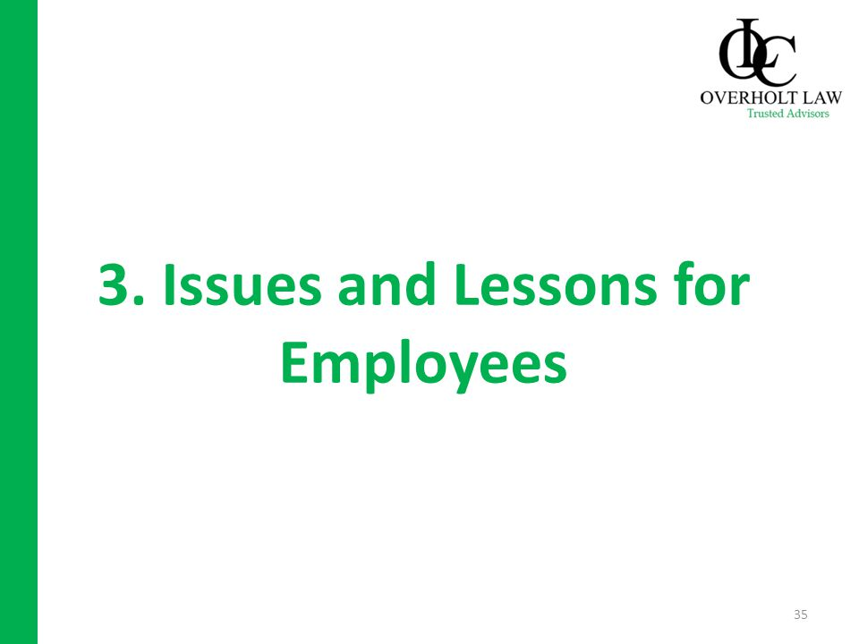 3. Issues and Lessons for Employees 35