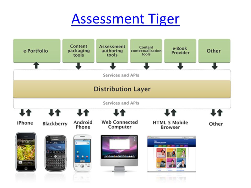 Assessment Tiger