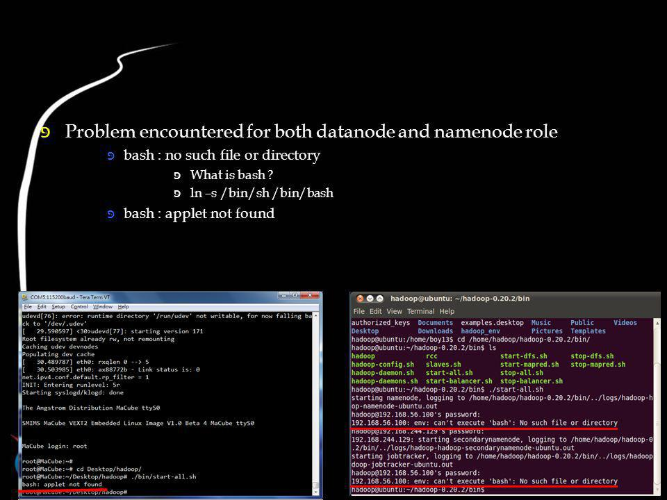 Problem encountered for both datanode and namenode role bash : no such file or directory What is bash .