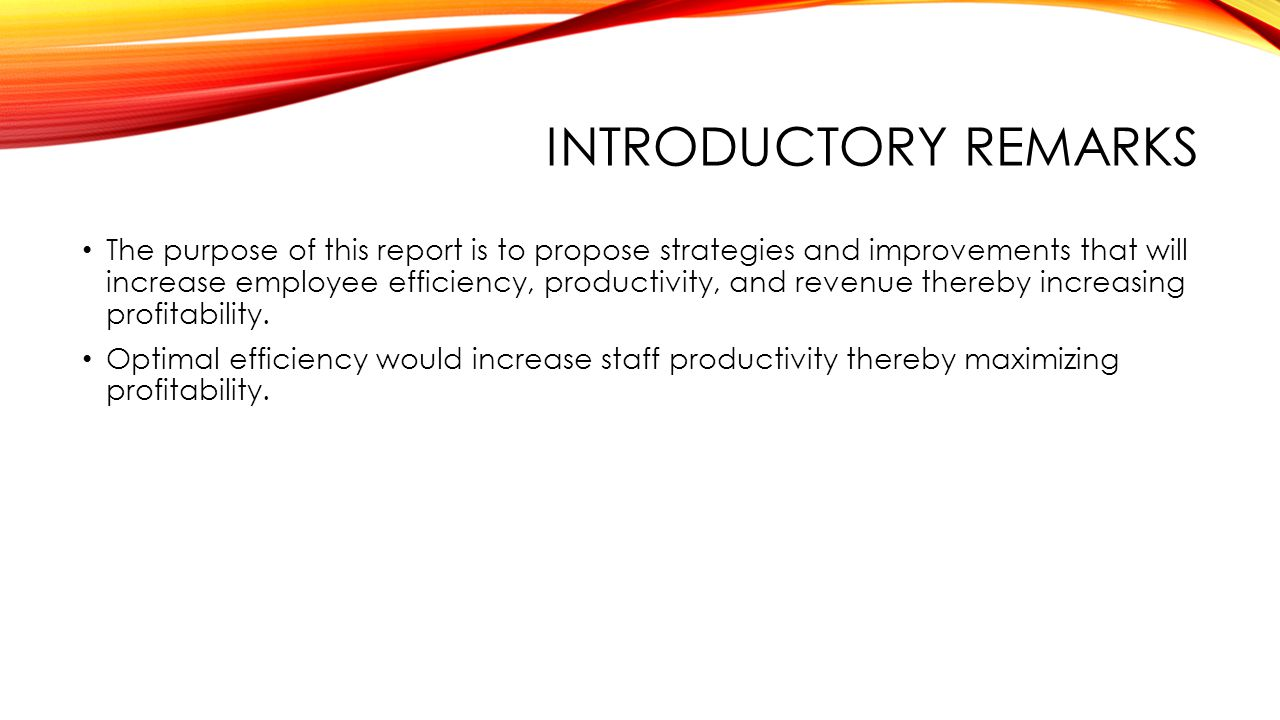 INTRODUCTORY REMARKS The purpose of this report is to propose strategies and improvements that will increase employee efficiency, productivity, and revenue thereby increasing profitability.