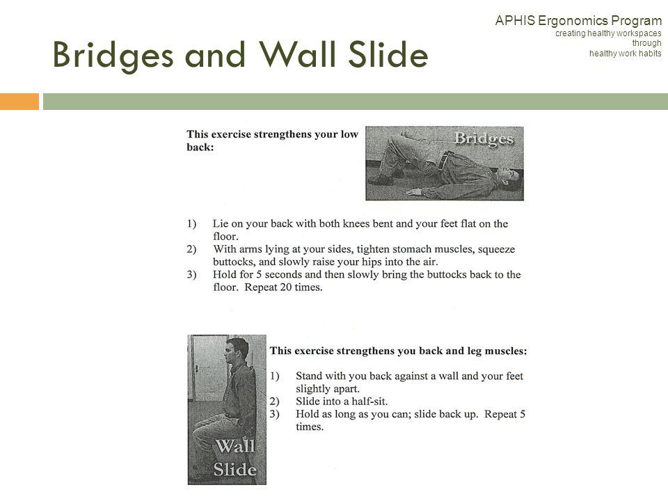 APHIS Ergonomics Program creating healthy workspaces through healthy work habits Bridges and Wall Slide