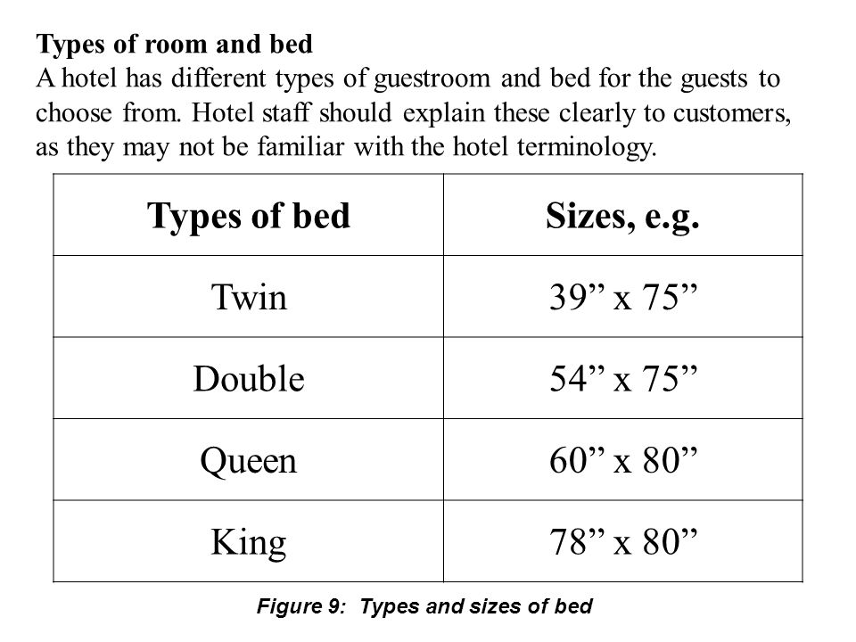 Types of room and bed A hotel has different types of guestroom and bed for the guests to choose from.