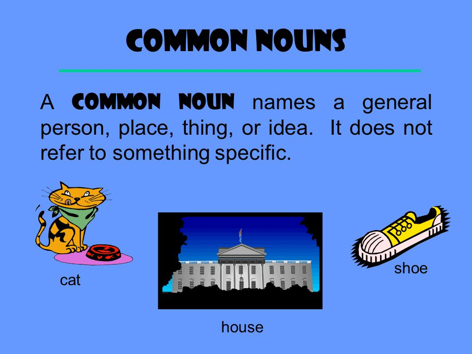 Definition A NOUN is a word that names a person, a place, a thing, or an idea. person place thing idea ?