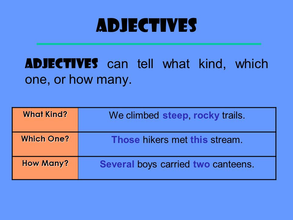 Definition An ADJECTIVE describes, or modifies, a noun or pronoun. One adjective can change the meaning of a whole sentence. We take exciting trips. W