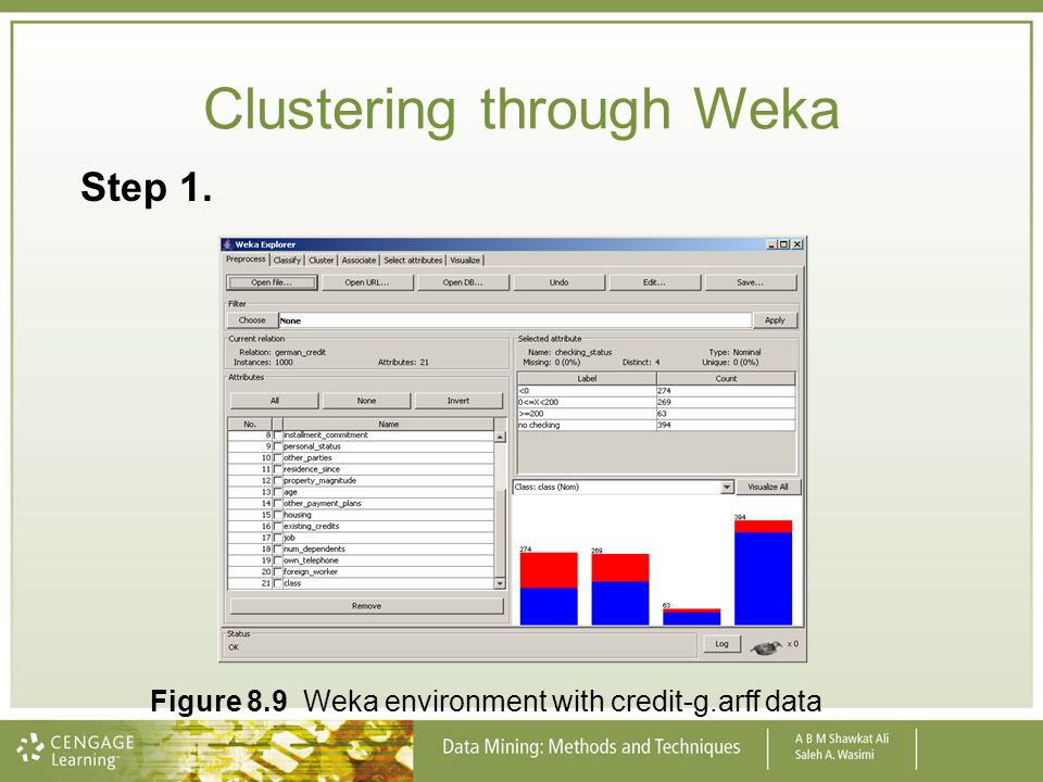 Clustering through Weka Step 1. Figure 8.9 Weka environment with credit-g.arff data