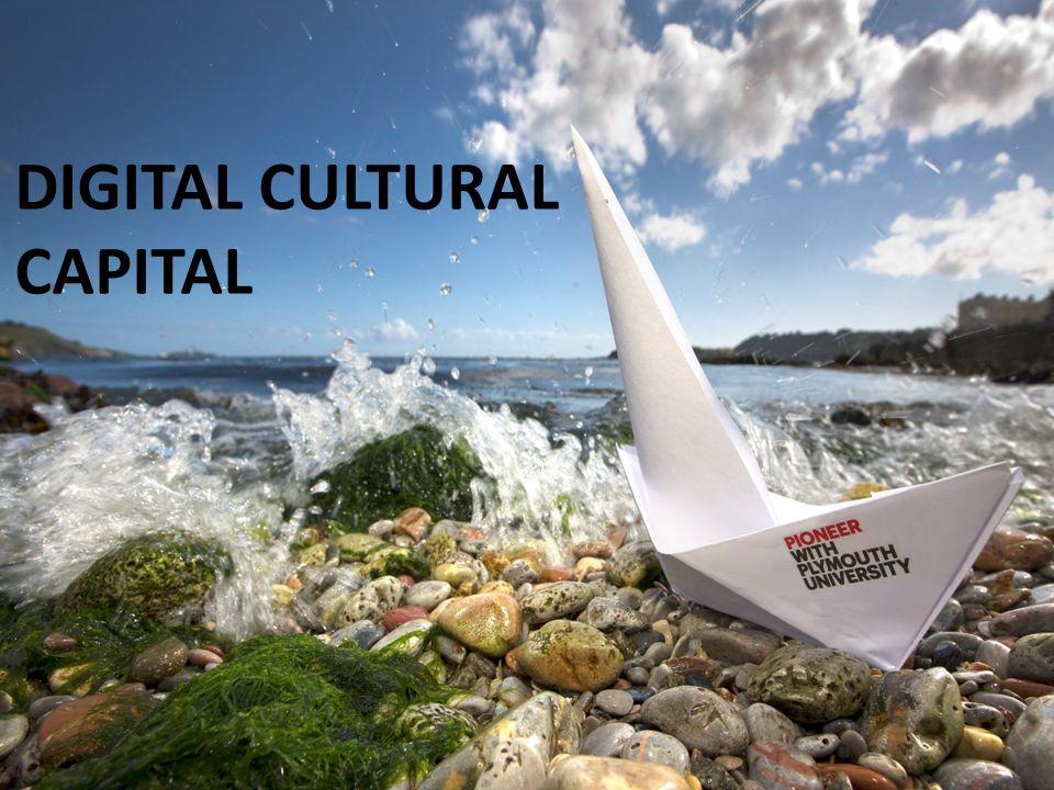 FINDINGS DIGITAL CULTURAL CAPITAL