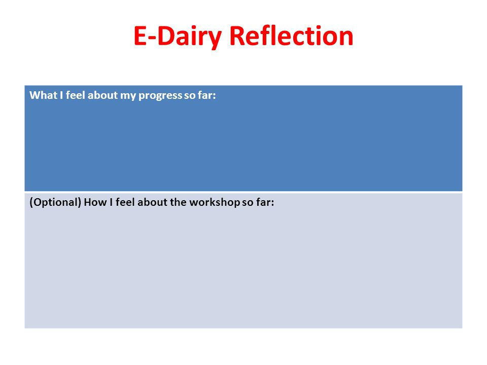 E-Dairy Reflection What I feel about my progress so far: (Optional) How I feel about the workshop so far: