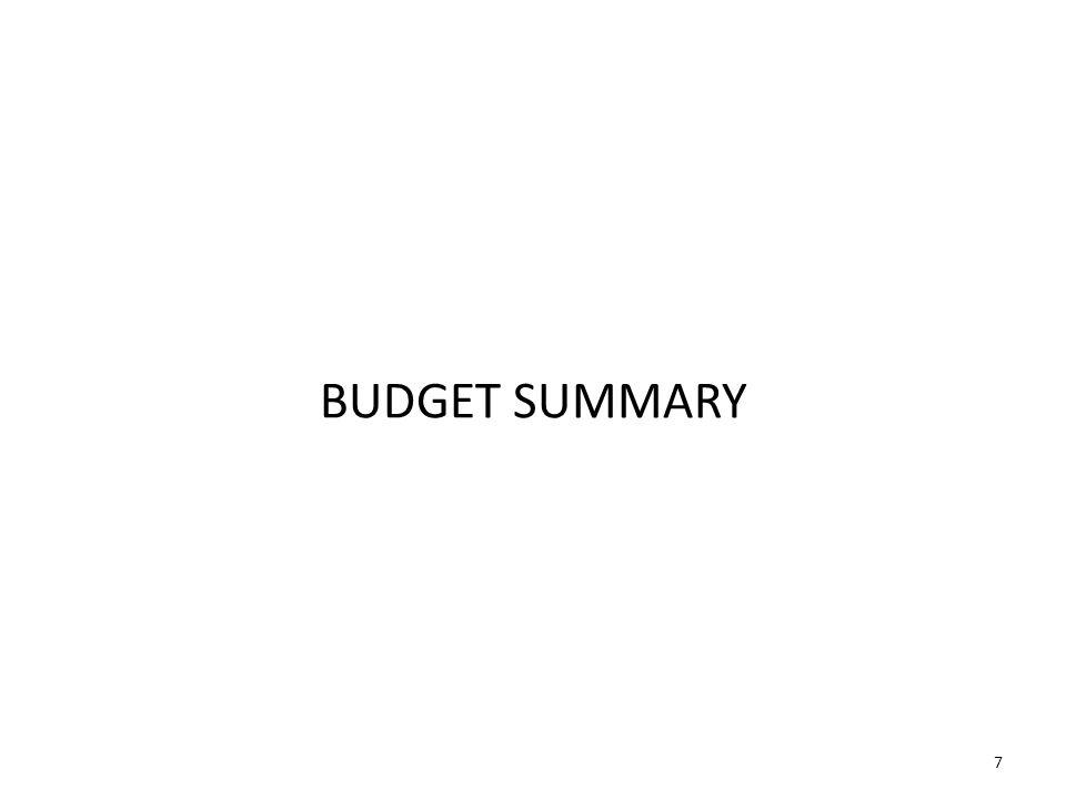 7 BUDGET SUMMARY