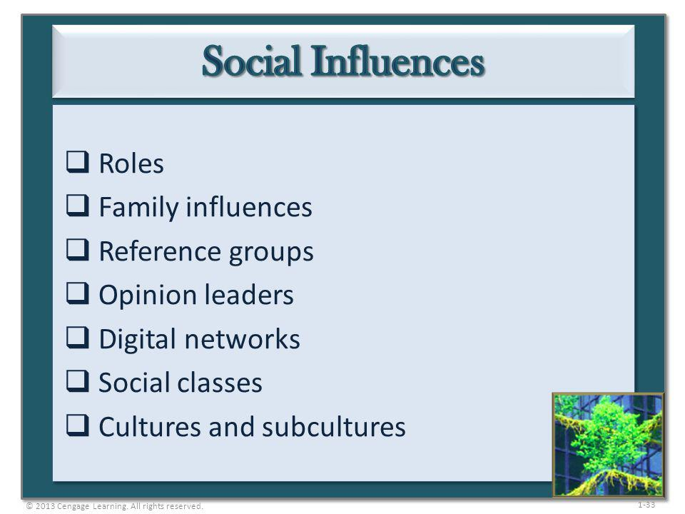 1-33 Roles Family influences Reference groups Opinion leaders Digital networks Social classes Cultures and subcultures © 2013 Cengage Learning. All ri