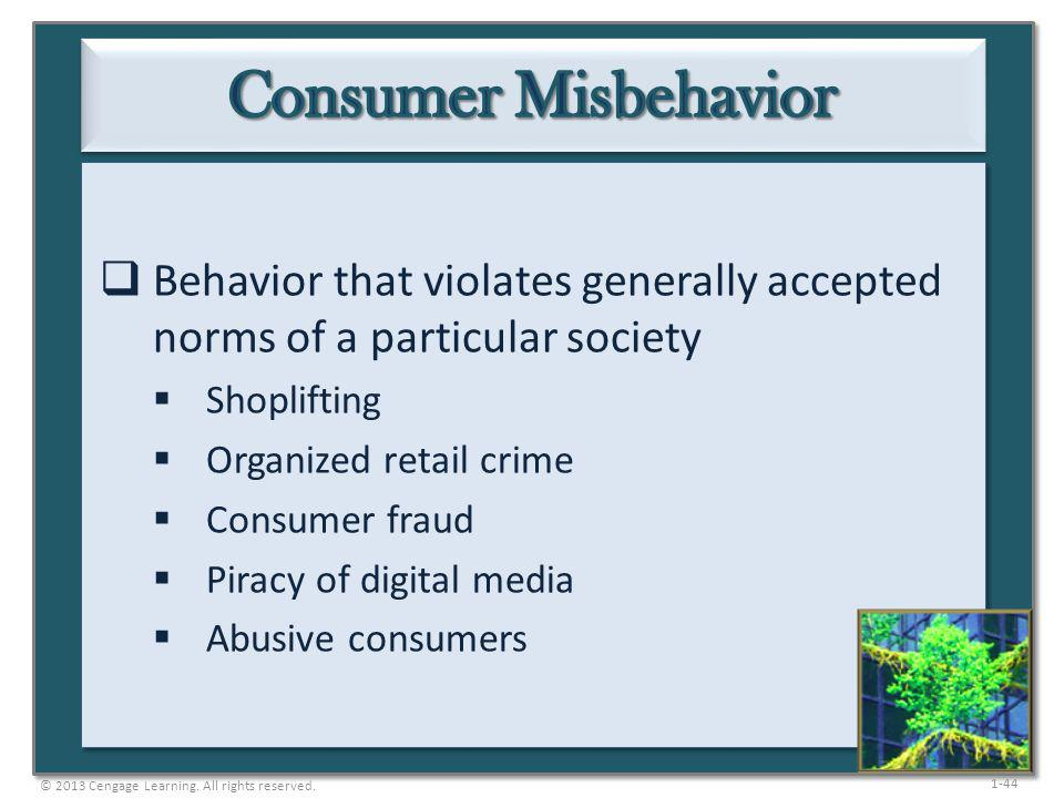 1-44 Behavior that violates generally accepted norms of a particular society Shoplifting Organized retail crime Consumer fraud Piracy of digital media