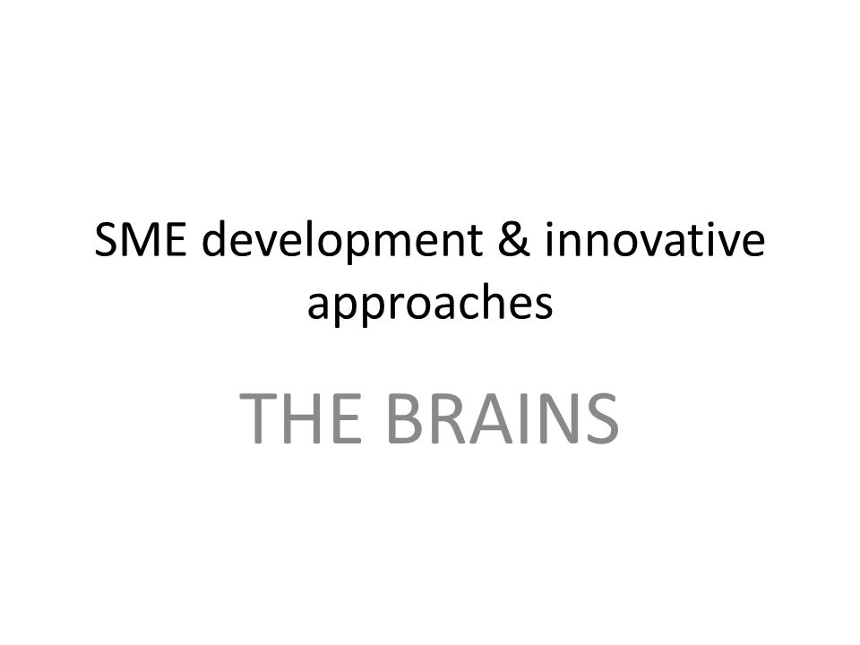 SME development & innovative approaches THE BRAINS
