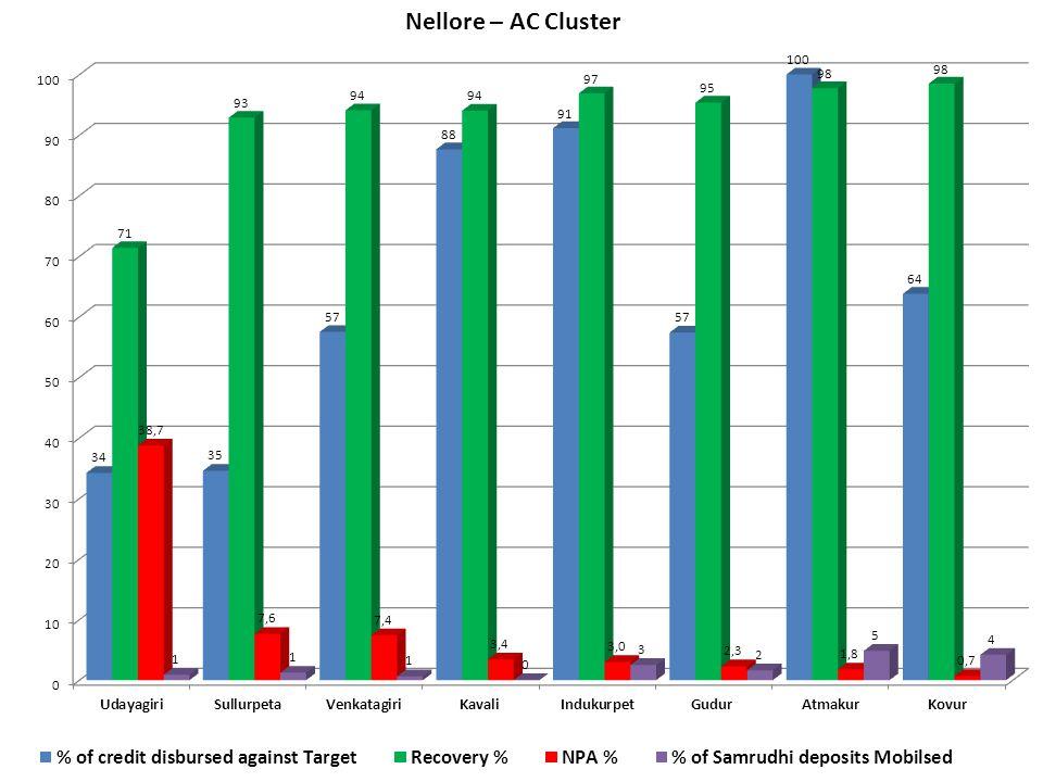 Nellore – AC Cluster