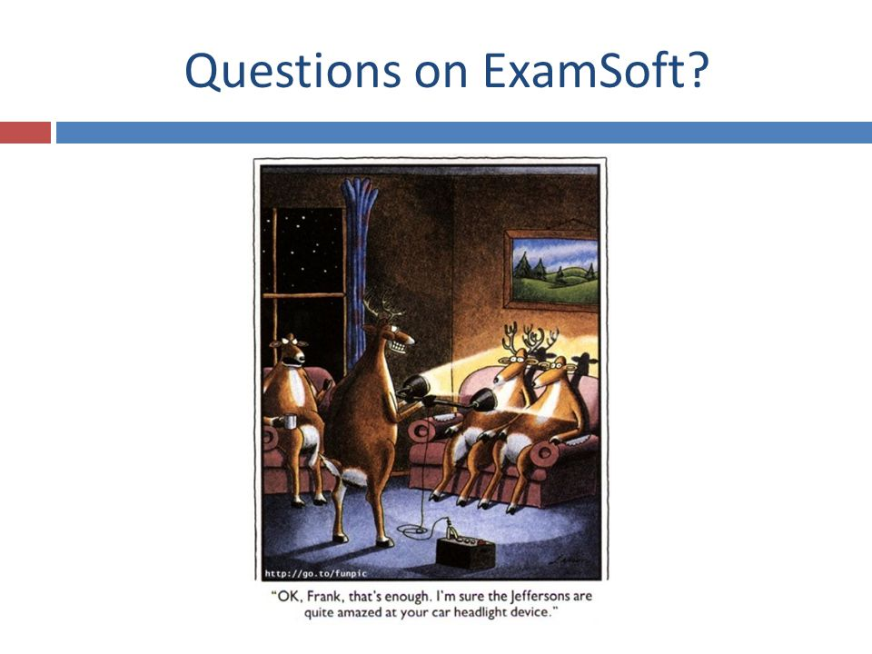 Questions on ExamSoft?
