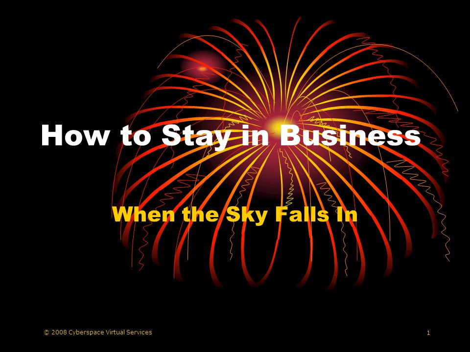 © 2008 Cyberspace Virtual Services 1 How to Stay in Business When the Sky Falls In