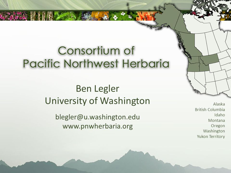 Image and database smaller herbaria in ID, OR, and WA What Were Doing Right Now Small herbaria house valuable specimens not present in the larger herbaria.