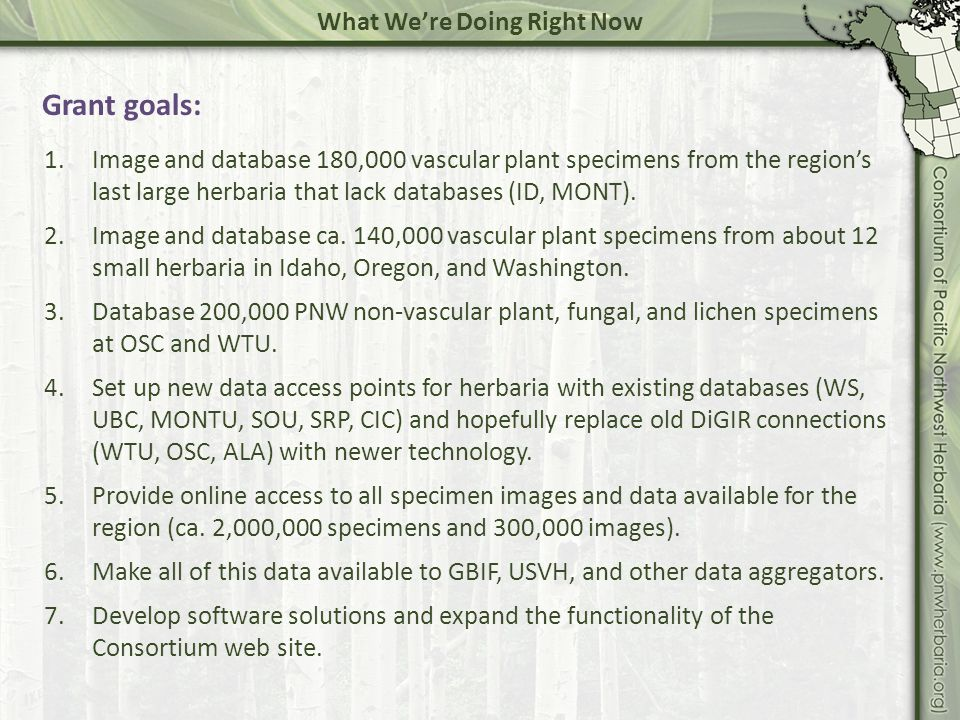 Technology, Software & Solutions Imaging – whats available: Imaging documentation on the consortium web site: http://www.pnwherbaria.org/documentation/specimenimaging.php Descriptions of hardware and software we use.