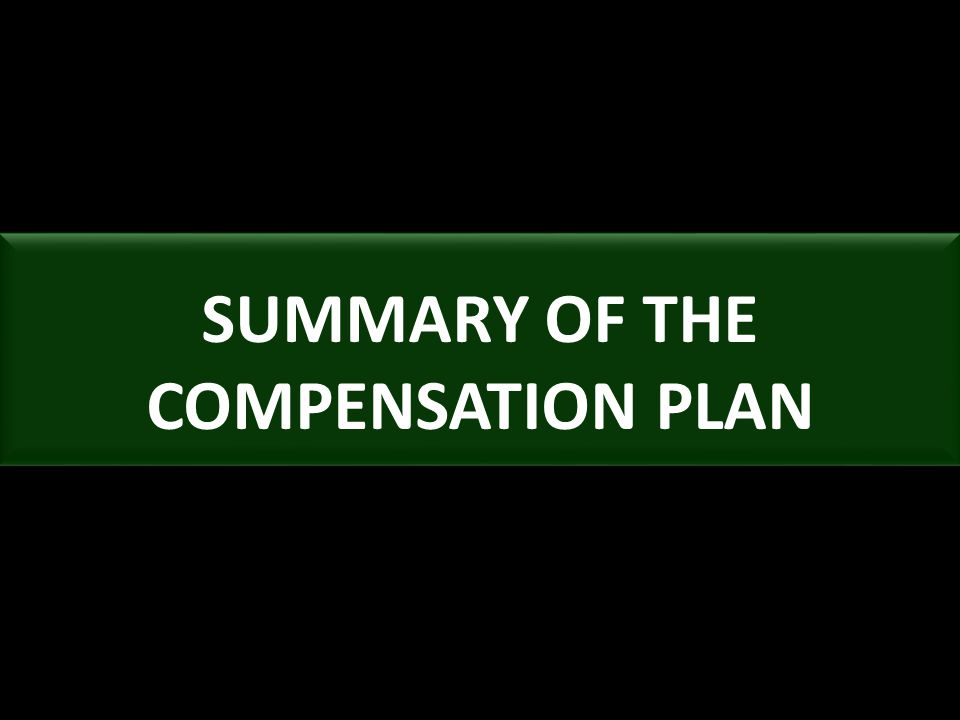 SUMMARY OF THE COMPENSATION PLAN
