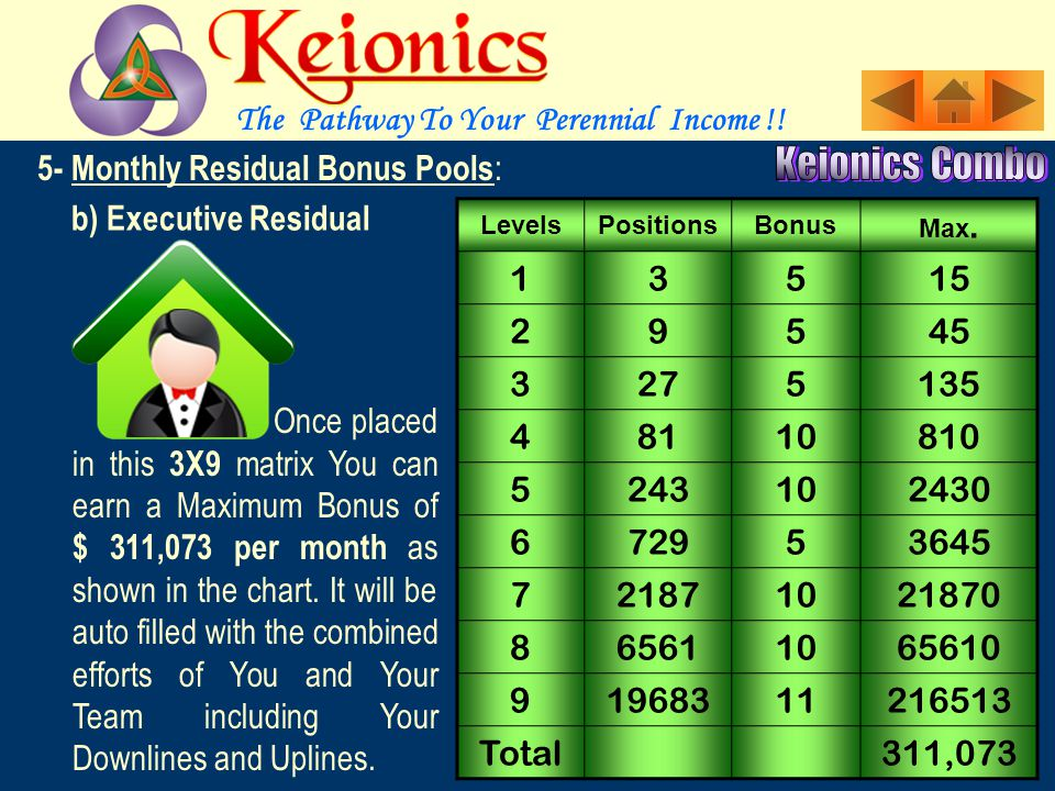 5- Monthly Residual Bonus Pools : a)Economy Residual : LevelsPositionsBonus Max. Bonus 1300 29218 327254 4812162 52434972 Total 1206 as shown in the c