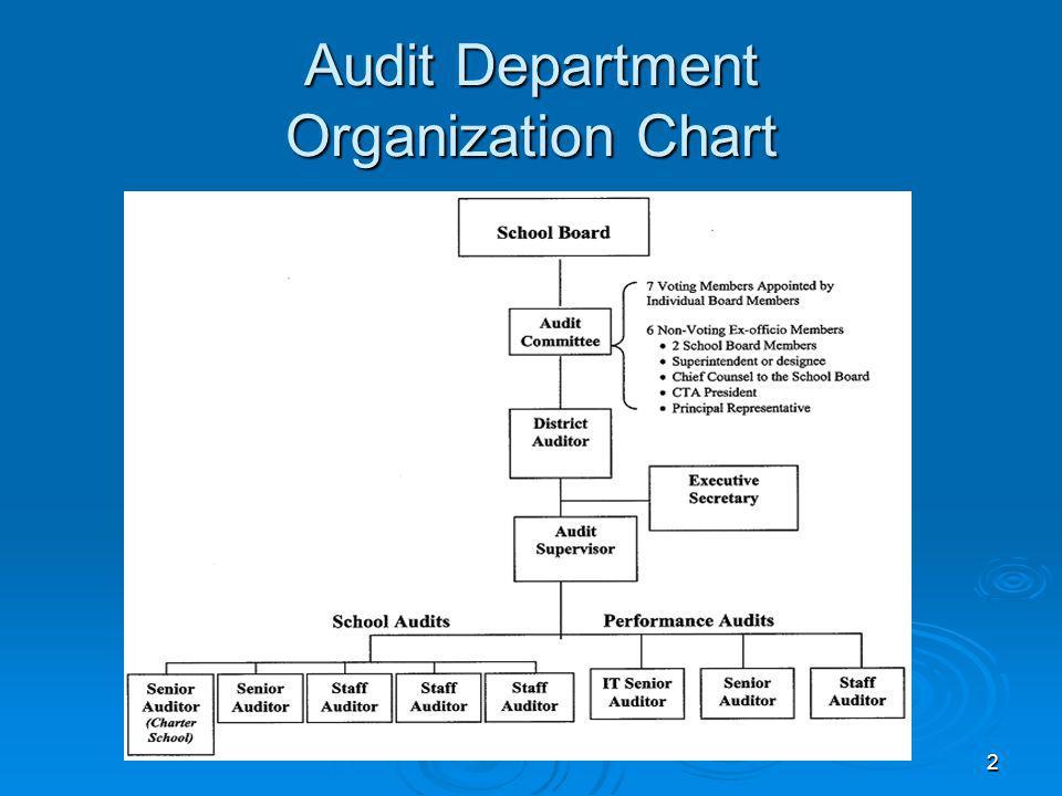 2 Audit Department Organization Chart