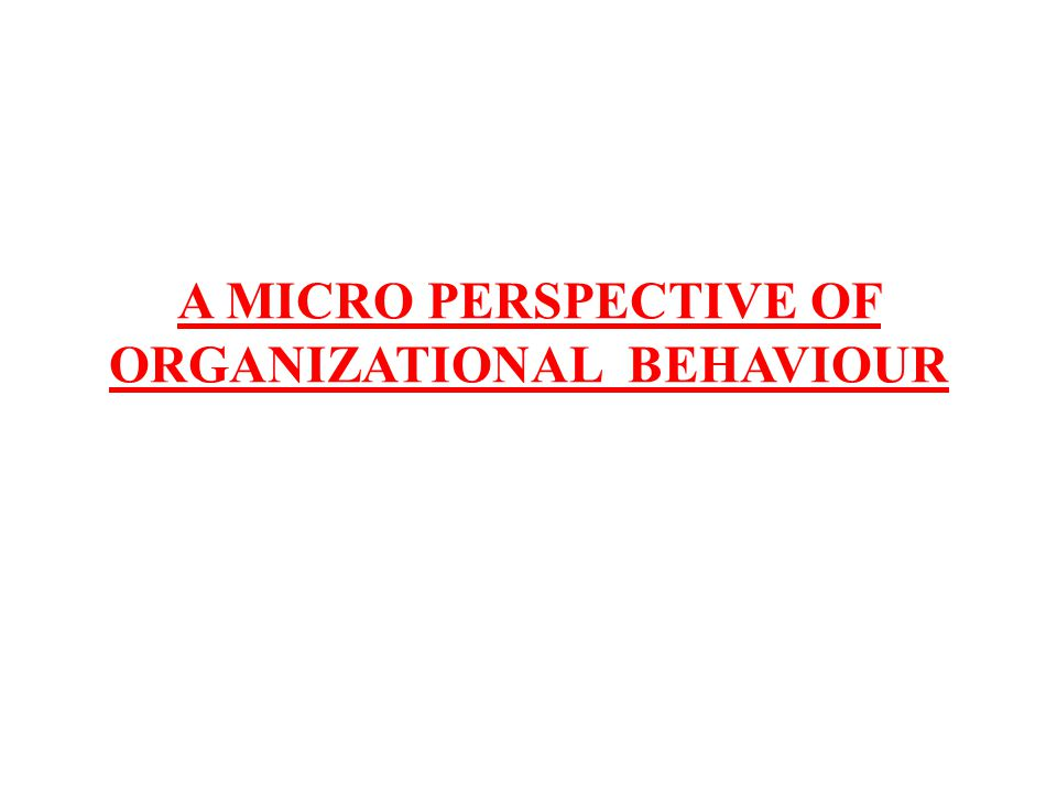 A MICRO PERSPECTIVE OF ORGANIZATIONAL BEHAVIOUR