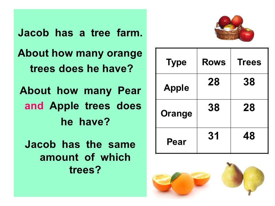Jacob has a tree farm. About how many orange trees does he have? About how many Pear and Apple trees does he have? Jacob has the same amount of which
