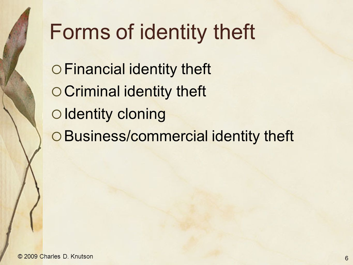 © 2009 Charles D. Knutson Forms of identity theft Financial identity theft Criminal identity theft Identity cloning Business/commercial identity theft
