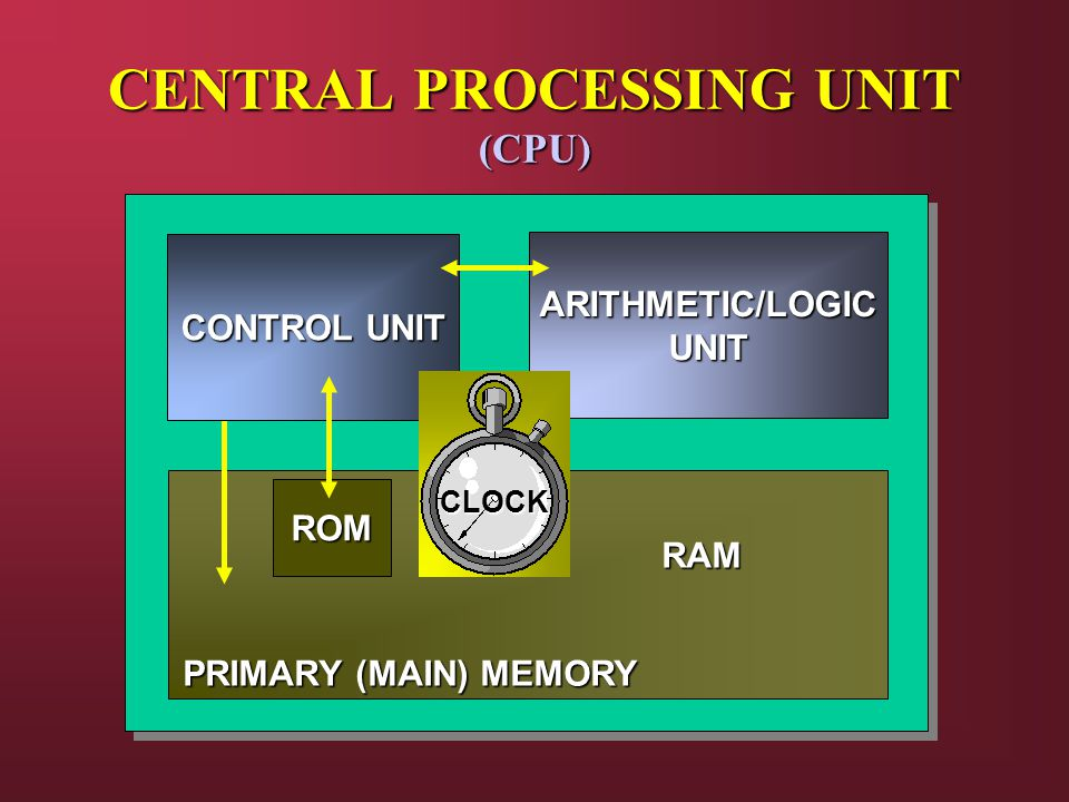 CENTRAL PROCESSING UNIT (CPU) RAM PRIMARY (MAIN) MEMORY CONTROL UNIT ARITHMETIC/LOGICUNIT ROM CLOCK