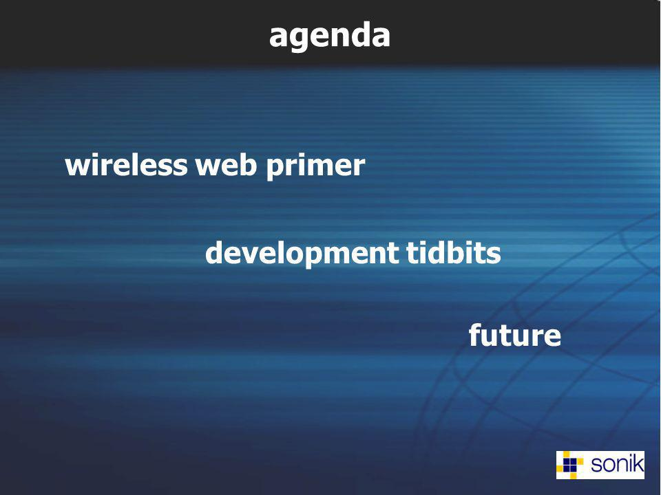 agenda wireless web primer development tidbits future