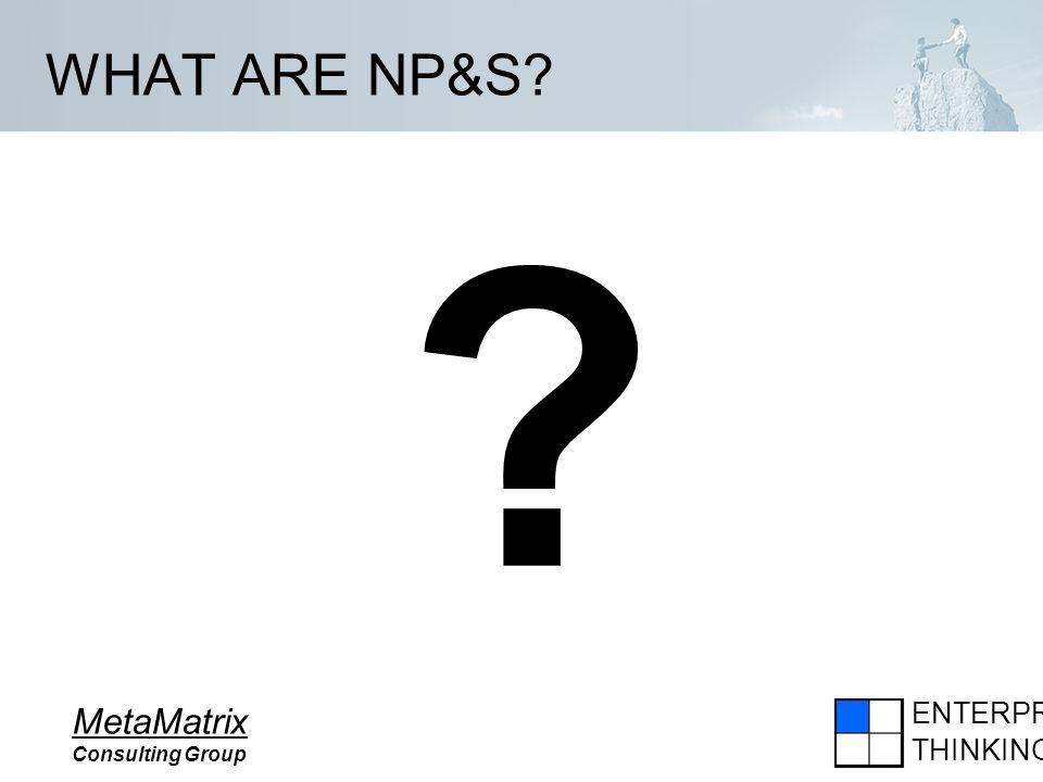 ENTERPRISE THINKING MetaMatrix Consulting Group WHAT ARE NP&S? ?