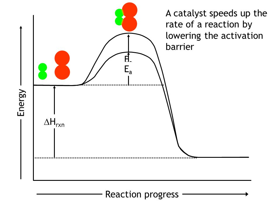 Reaction progress Energy EaEa Activated complex: an unstable transition state between reactants and products.