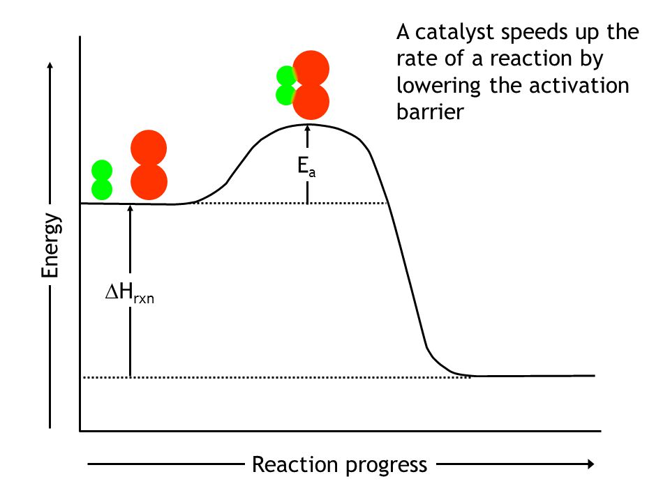Reaction progress Energy EaEa H rxn EaEa A catalyst speeds up the rate of a reaction by lowering the activation barrier