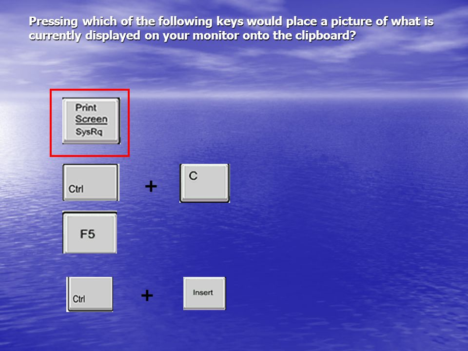 Pressing which of the following keys would place a picture of what is currently displayed on your monitor onto the clipboard.