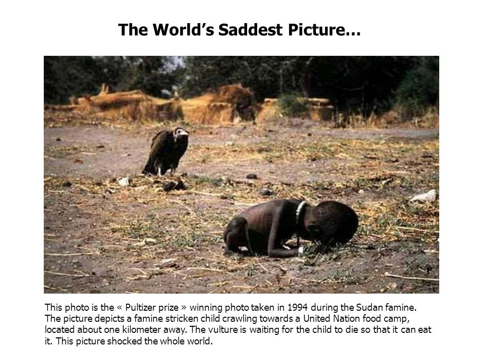 The Worlds Saddest Picture… This photo is the « Pultizer prize » winning photo taken in 1994 during the Sudan famine.