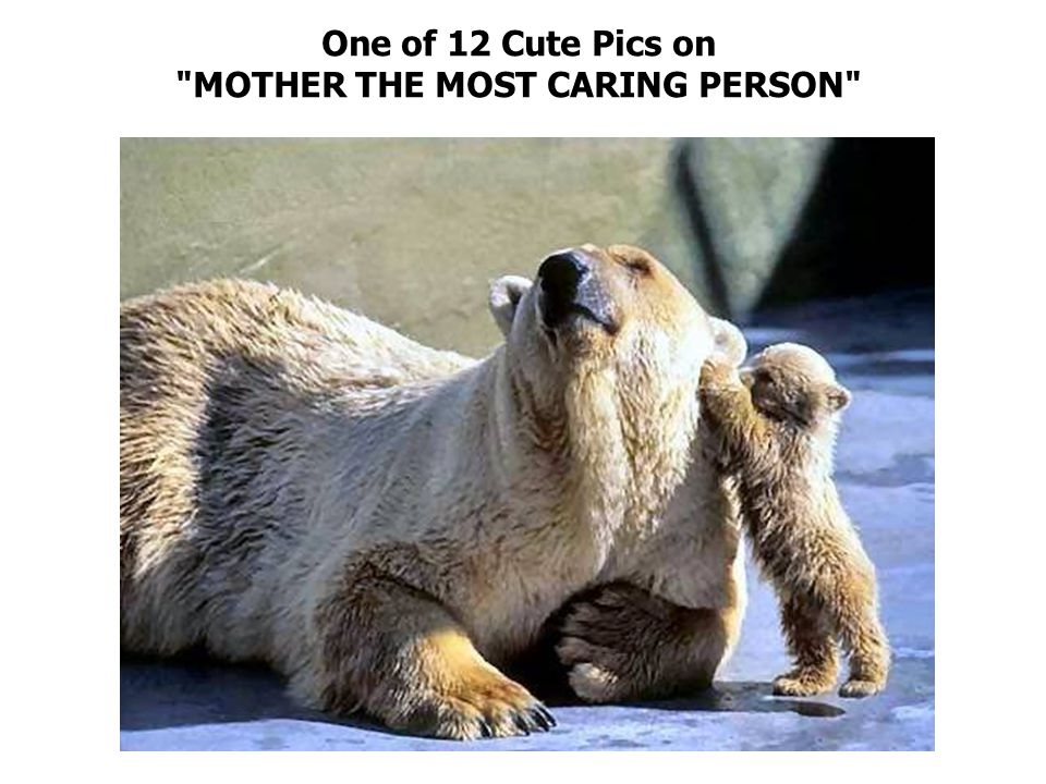 One of 12 Cute Pics on MOTHER THE MOST CARING PERSON